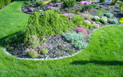 Tun Sie was für Ihren Garten