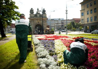 kompleksowa pielęgnacja terenów zieleni (2)