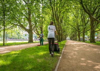 kompleksowa pielęgnacja terenów zieleni (4)