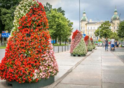 zagospodarowanie przestrzeni publicznej (1)