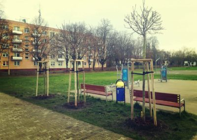 zagospodarowanie przestrzeni publicznej (4)