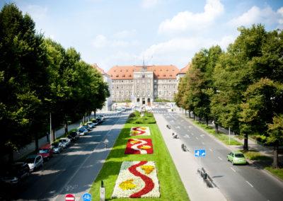 zagospodarowanie terenów zieleni (1)