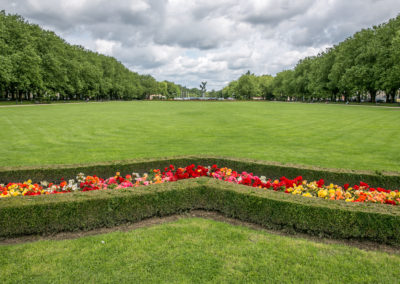 zagospodarowanie terenów zieleni (7)